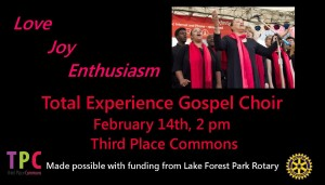 Total Experience Feb 14