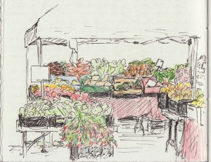FarmersMarketDrawing